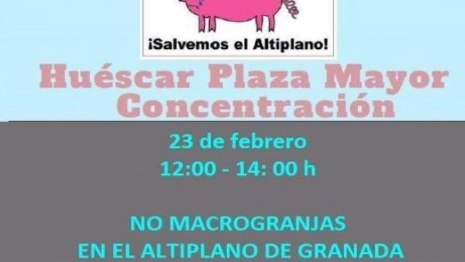 Convocada una concentración contra la instalación de macrogranjas en el Altiplan