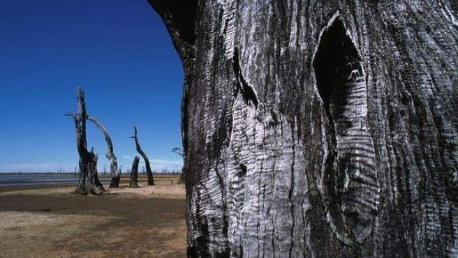 Imagen del Parque Nacional de los Montes Grampianos, en Australia.
