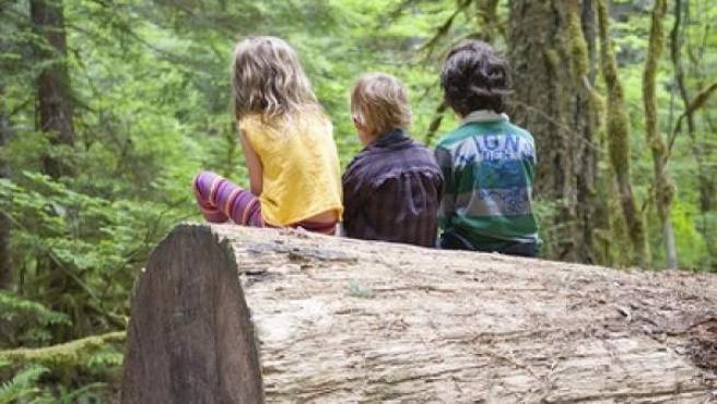 Tres niños jugando en el campo, subidos en un tronco.