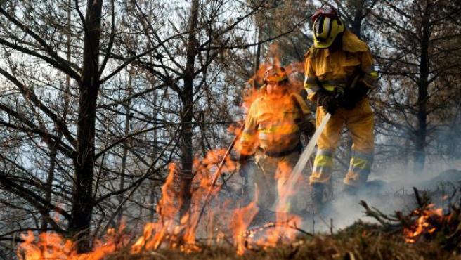 Agentes de montes de Cantabria apagan un incendio forestal, en los montes de la localidad de Vargas.