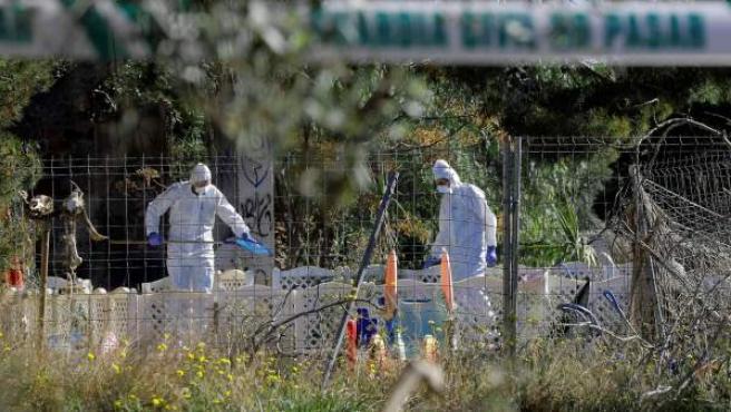 Agentes de la Policía Científica de la Guardia Civil trabajan en el lugar de la muerte de dos niños en Godella (Valencia).
