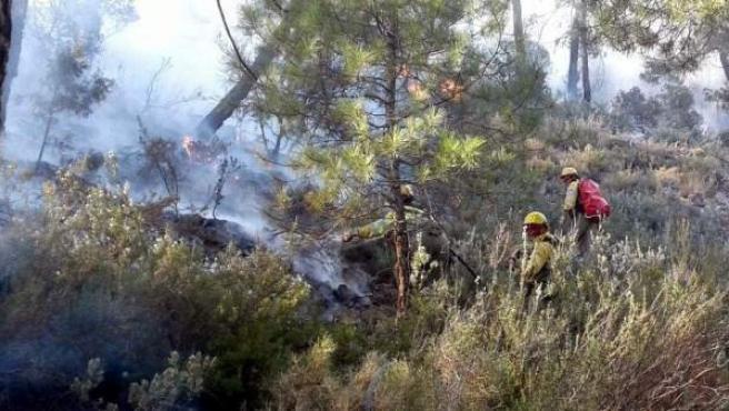 Efectivos tratan de apagar las llamas en el incendio declarado en Paterna del Madera, Albacete.