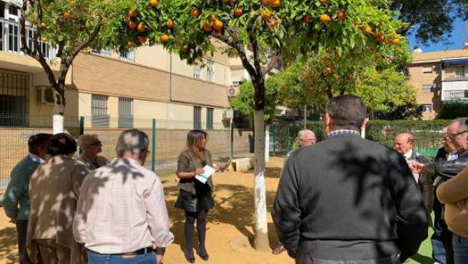 Sevilla.- PP alerta de la 'indignación' de los vecinos entorno de Cruz Roja por