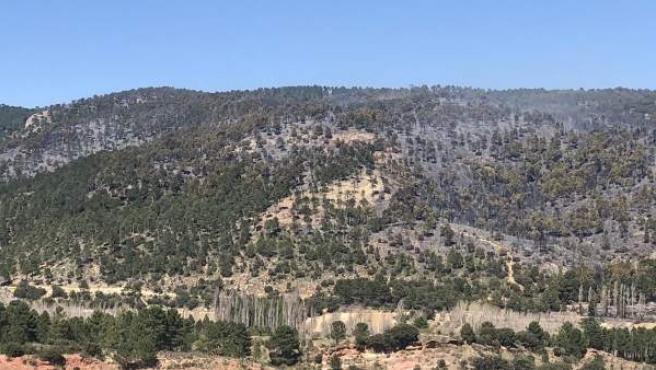 Incendios.- La UME se retira del incendio forestal declarado en Paterna del Made