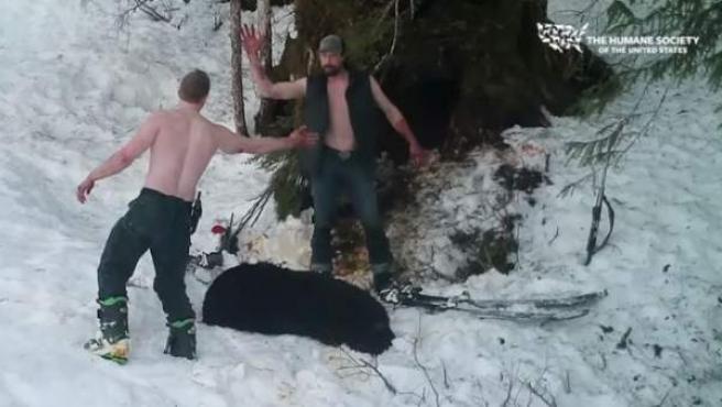 Padre e hijo se felicitan tras matar de forma ilegal una osa en Alaska.