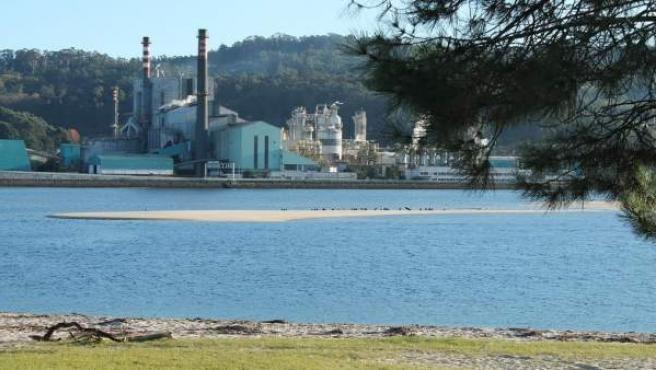 Ence mantén a súa previsión de beneficio pese ao litixio en Pontevedra e eleva u