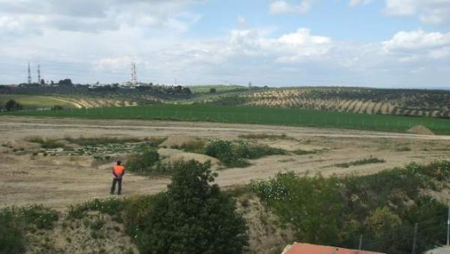 Sevilla.- El pleno de Guzmán aprueba restituir la protección de los terrenos ale