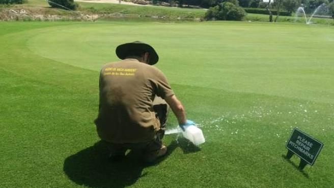 El Govern multa con más de 440.000 euros a tres campos de golf de Mallorca por infracciones de uso del agua