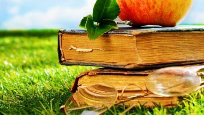 Las Mejores Frases Para Un Feliz Sant Jordi 2019 Y Día Del Libro