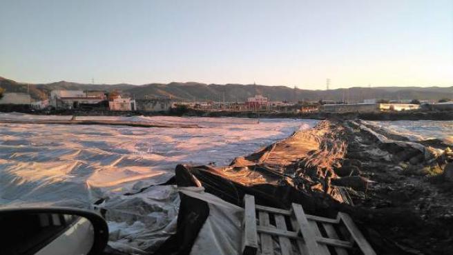 Invernadero dañado por granizo en el Poniente almeriense