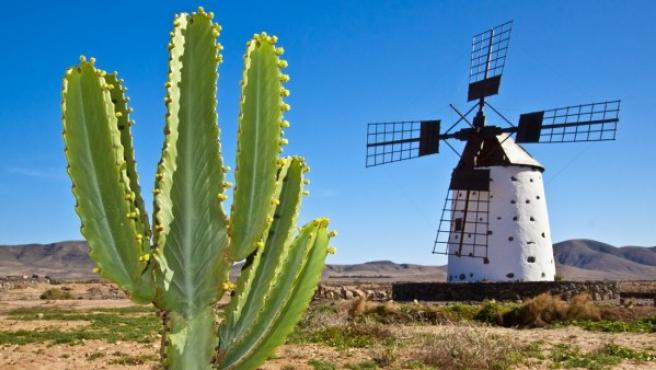 Uno de los molinos características de la isla de Fuerteventura.