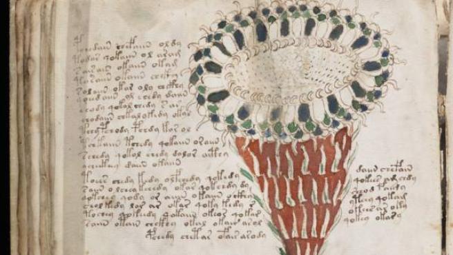 Una página del manuscrito Voynich en una imagen de Wikipedia.