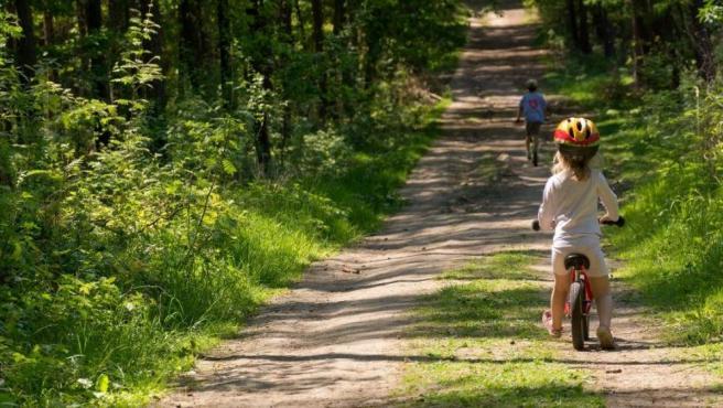 Dos niños montando en bicicleta por un camino forestal.