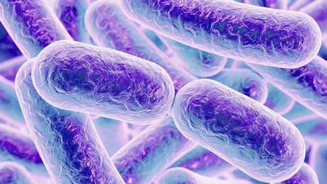 Microbiota y microbioma intestinal.