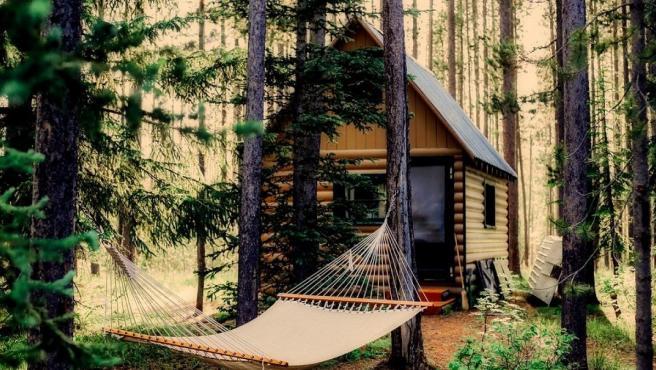 Tranquilidad y desconexión en plena naturaleza, es lo que ofrecen las cabañas en los árboles.