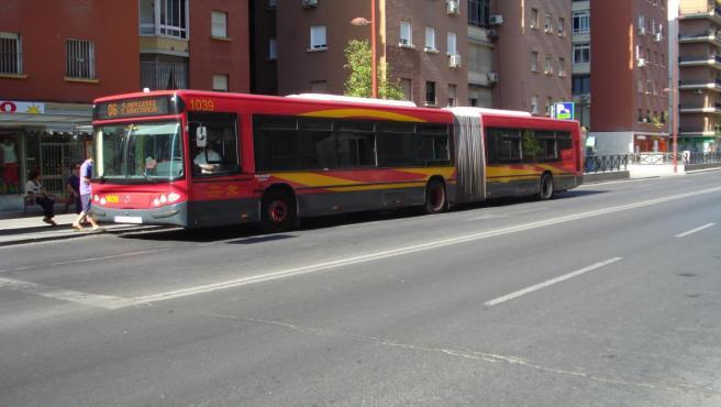 Sevilla.-IU pide reorientar paradas antiacoso porque ve 'un peligro para las mujeres' las implantadas hasta ahora