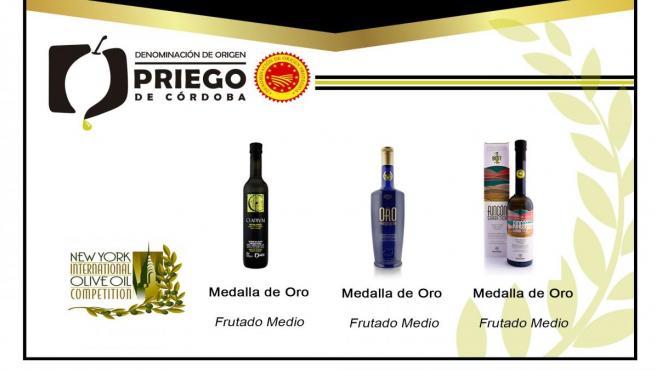 Córdoba.- La DOP Priego de Córdoba recibe tres medallas de oro en el Concurso Internacional de Nueva York 2018-2019