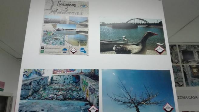 Almería.-Educación.-Estudiantes del IES Albaida denuncian el estado del parque del Andarax con una exposición de fotos