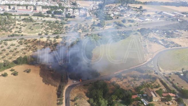 Córdoba.- Sucesos.- Infoca y SEIS intervienen en un incendio de pastos junto a la barriada de Alcolea
