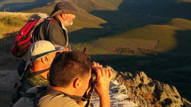 Las ganas de ver lobos en libertad condujeron a un grupo de amantes de la naturaleza a este enclave de la Sierra de la Cabrera.