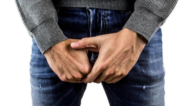 causa la erección