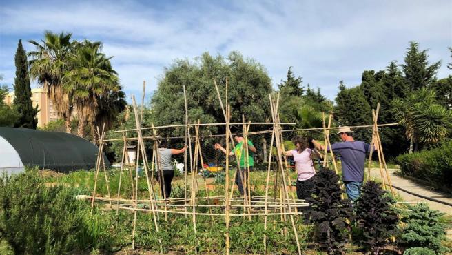 Málaga.- La Noria celebra el Día del Medio Ambiente con un panel de experiencias de emprendimiento e innovación social