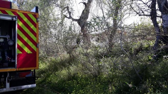 Almería.-Sucesos.-Infoca actúa en un incendio forestal declarado en el término municipal de Balanegra