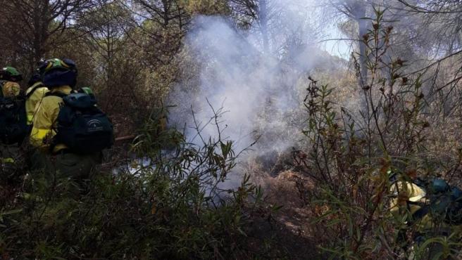Huelva.- Sucesos.- Estabilizado el incendio forestal de Moguer