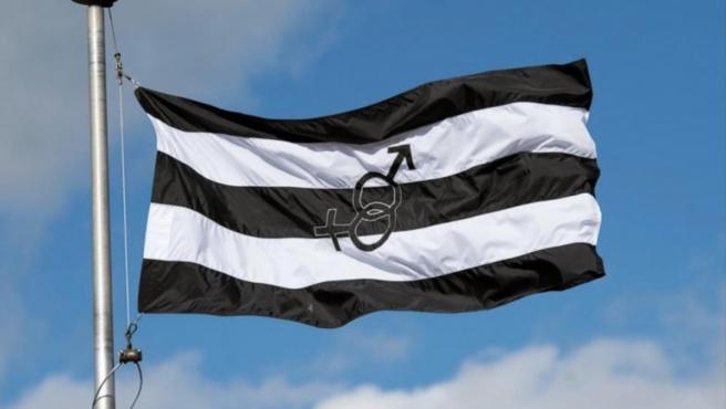 """La bandera del """"Orgullo Hetero""""."""