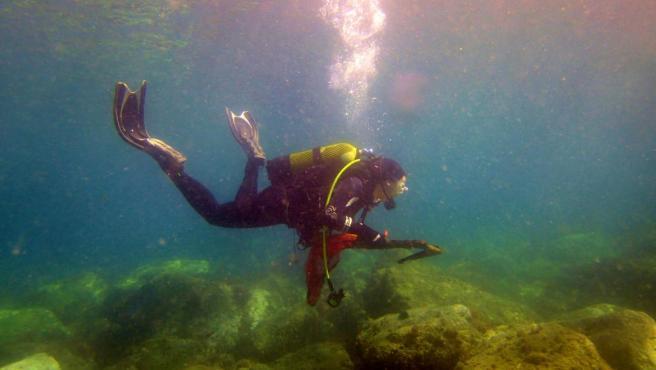Granada.- Más de 60 buzos se reúnen en Playa de Cambriles para recoger plásticos y residuos