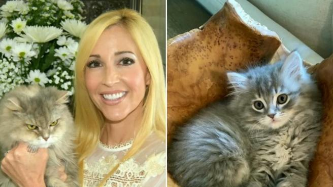 Ashley Bullerdick con el gato original, a la derecha el gato clonado.