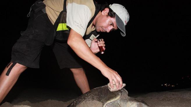 Óscar Aranda junto a una tortuga marina.