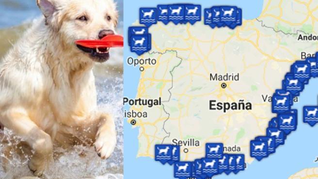 Resultado de imagen de mapa playas perros 2019 españa