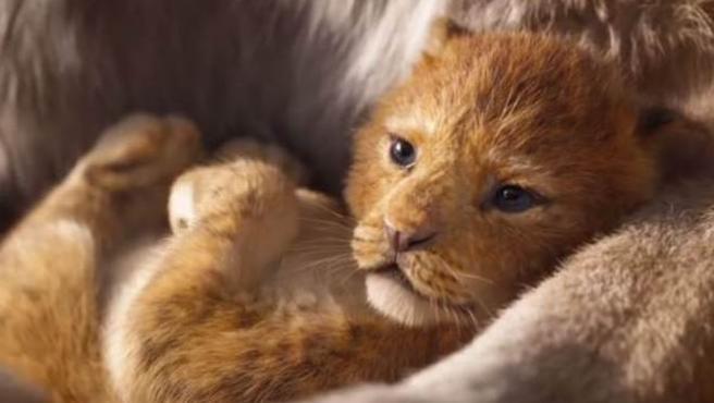 """Primeras reacciones a 'El rey león': """"No puedo creer que sea CGI"""""""