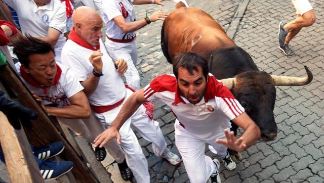 Los toros de la ganadería de Núñez del Cuvillo, de Vejer de la Frontera (Cádiz), a su paso por el tramo de Telefónica, durante el sexto encierro de los Sanfermines 2019.