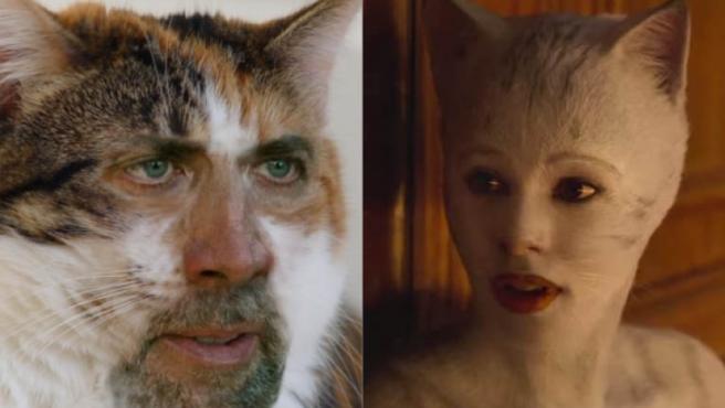 Memes de 'Cats': Twitter se lleva el gato al agua
