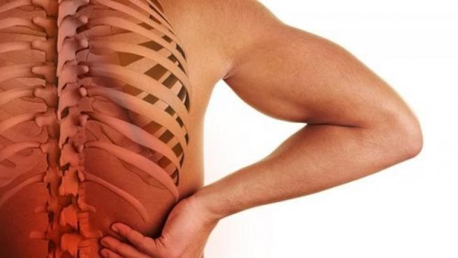 Imagen recreada de una columna vertebral.