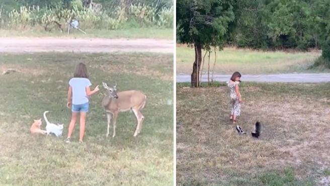 La niña que parece que puede hablar con los animales salvajes.