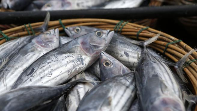 Una cesta con pescado fresco