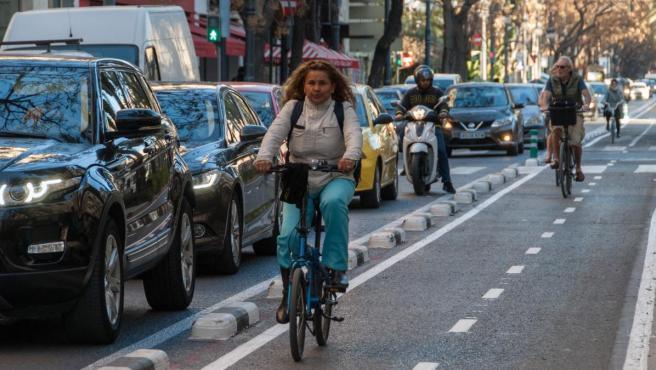 Usuarios recorren el carril bici de la avenida Reino de València.