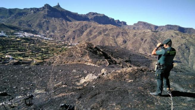 Un guardia civil observa la zona afectada por el incendio de Gran Canaria