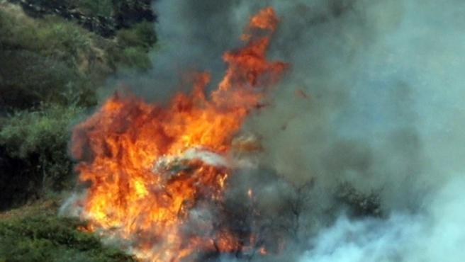 Uno de los focos del incendio forestal en la localidad de Montaña Alta, en el municipio de Santa María de Guía, en Gran Canaria.