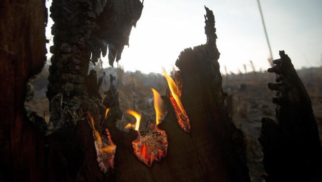 Vista de los daños. producto del incendio en la selva amazónica este lunes, en Porto Velho (Brasil)