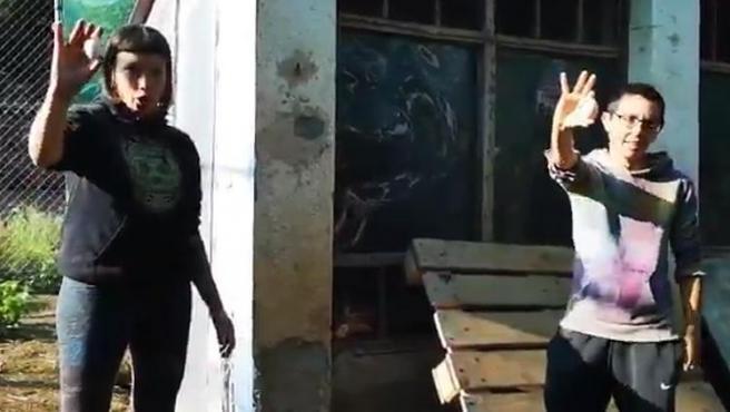 """Dos activistas del Santuario Almas Veganas defienden la separación de las gallinas de los gallos """"para que no las violen""""."""