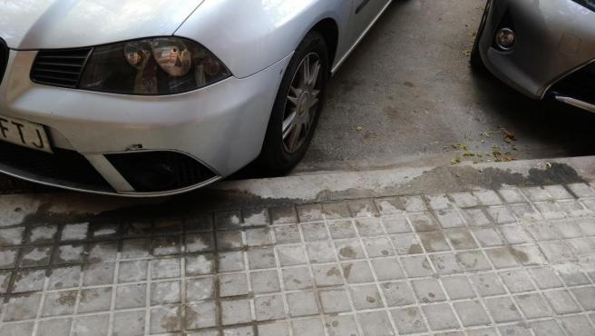<p>Estado de una acera de València llena de micciones caninas.</p>