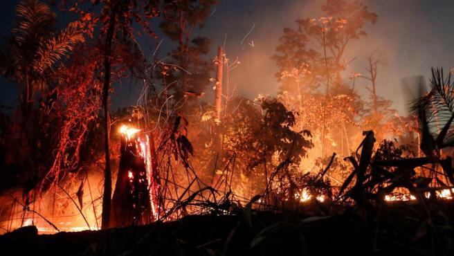 Redes mafiosas usan violencia para deforestar y quemar la Amazonía, según HRW