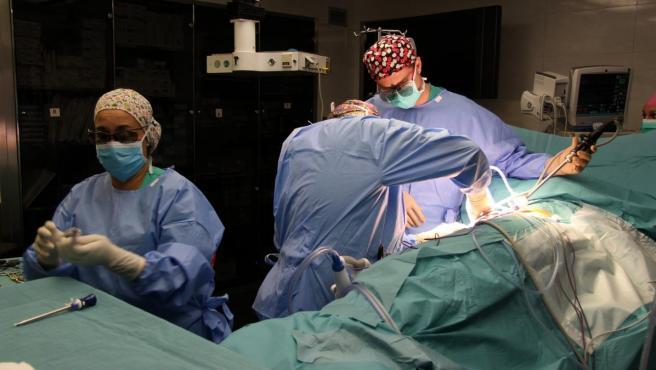Trasplante de riñón en el Hospital del Mar de Barcelona.