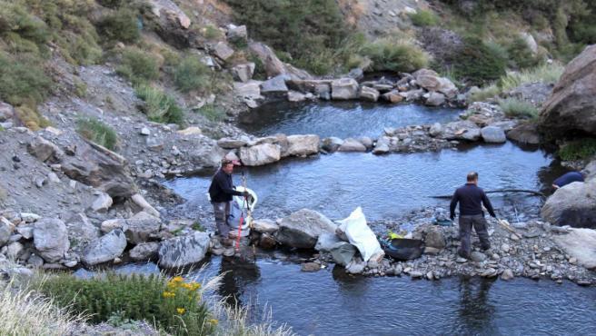 Foro de archivo de Sierra Nevada