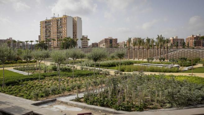 La primera fase del Parque Central de València abarca el 40% de la superficie total del futuro pulmón verde de la ciudad.