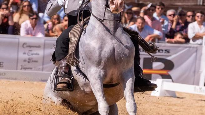 El jinete palmerino Álvaro Teba del Pino y su caballo 'Manolete'.